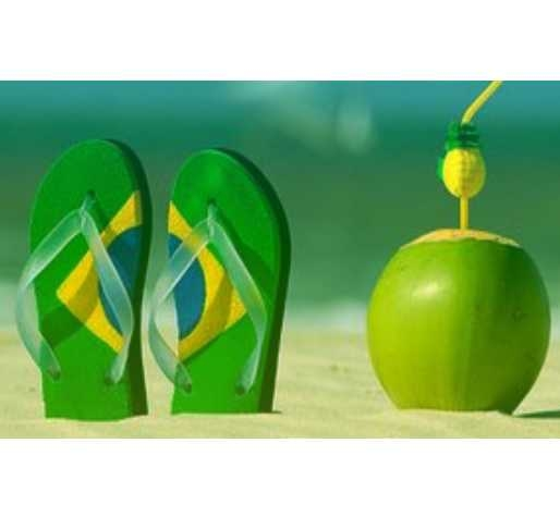 thèeme de soirée déguisée brésilienne
